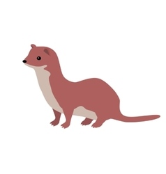 Ermine or weasel flat design vector