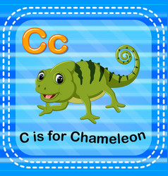 flashcard letter c is for chameleon vector image vector image