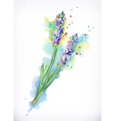 Lavender flowers watercolor painting mesh vector
