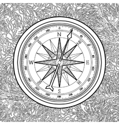 Graphic wind rose compass vector