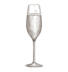 Glass of champagne hand drawn sketch vector