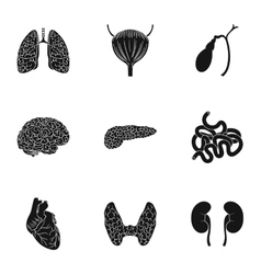 Human organs set icons in black style big vector