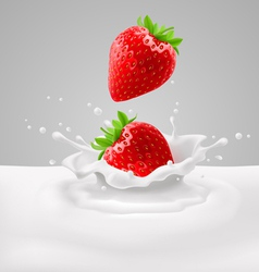 Strawberries with milk vector image vector image