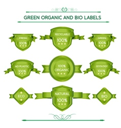 Green organic and bio labels vector image