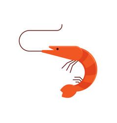 cartoon shrimp icon vector image