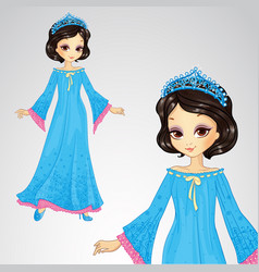 Beauty princess in blue dress vector
