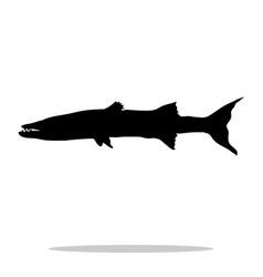 barracuda fish black silhouette aquatic animal vector image