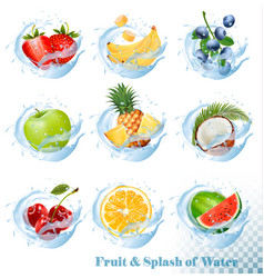big collection of fruit in a water splash icons vector image vector image
