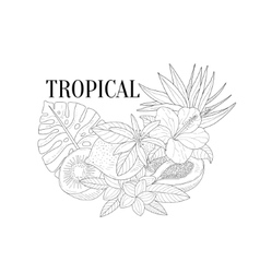 Tropical fruits and plants still life hand drawn vector