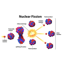 Nuclear fission vector