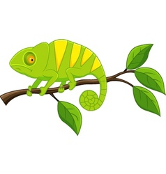 Cute iguana cartoon vector