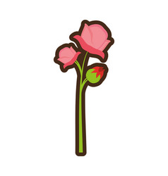 cartoon pink rose flower spring vector image
