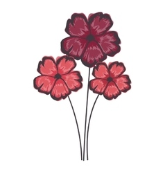 delicate flower drawing icon image vector image