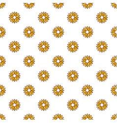 Honey plant pattern seamless vector