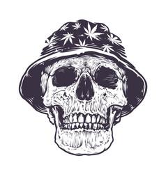 rasta skull in hat vector image vector image