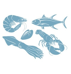 seafood vector image
