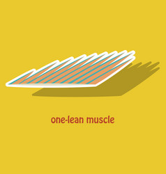 Sticker of structure skeletal muscle anatomy vector