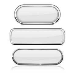white oval buttons with chrome frame vector image vector image