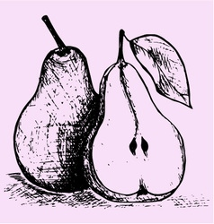 Pear with leaf vector