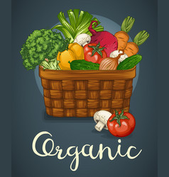 Basket of fresh vegetables poster vector
