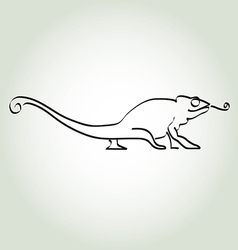 Chameleon in minimal line style vector image vector image