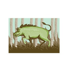 Razorback wild pig boar attacking vector