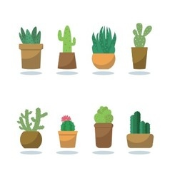 Fashionable cactus vector