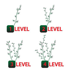 growing tree levels vector image vector image
