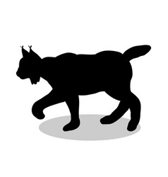 lynx wildlife black silhouette animal vector image vector image