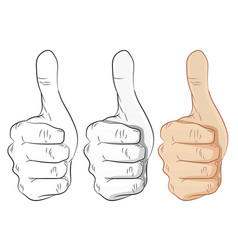 hands thumbs up outline gray and colorful- vector image vector image