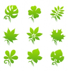 leaves elements for design vector image