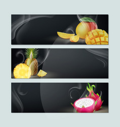 Set of fruit banners vector