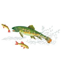 Brook-trout-predator-catch vector