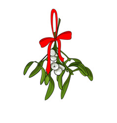 christmas mistletoe branches for your designs vector image vector image