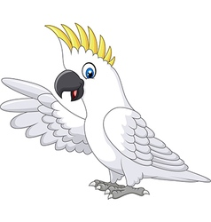 Cute white parrot presenting isolated vector image