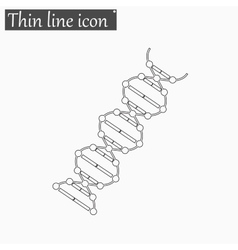 image DNA Drawing icon Style thin line vector image vector image