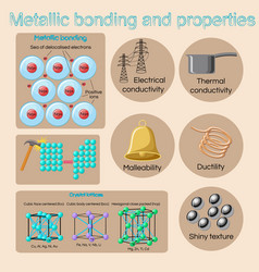Metallic bonding and basic physical properties of vector