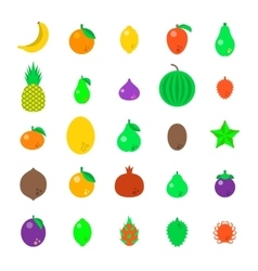 Exotic tropical fresh fruits flat style vector image vector image