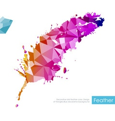 Triangle feather vector image