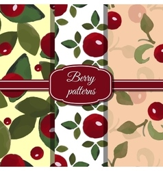 Setberrypatterns vector