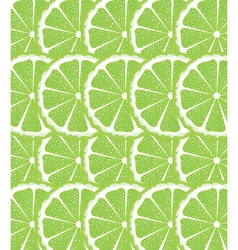 Lime slices background vector