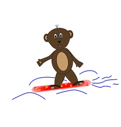 Teddy bear on snowboards vector