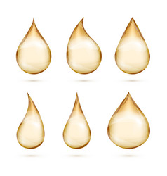 realistic oil drops set isolated white vector image