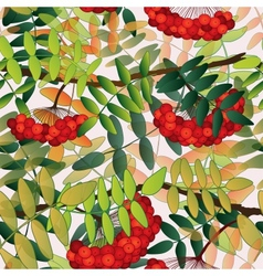 Seamless pattern with rowan berries leaves and vector