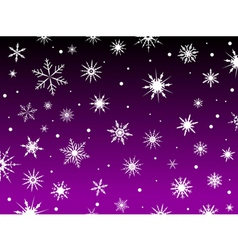 purple snowflakes vector image