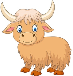 Cartoon funny yak isolated on white background vector