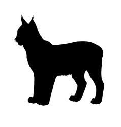 Lynx silhouette black white vector