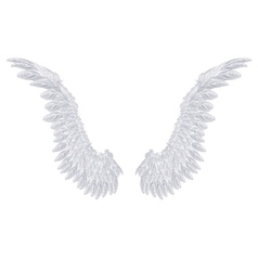 White Wings vector image