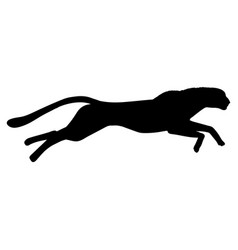 running cheetah silhouette black white vector image