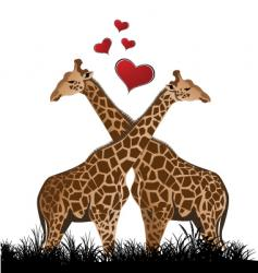 giraffe love vector image